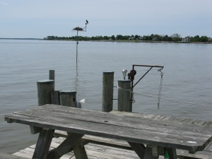Pole and Picnic Table