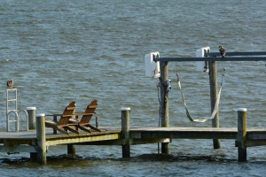 Dock to the south-two young ospreys hanging out