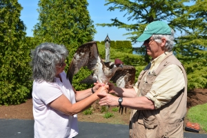 Mrs. COM handing an osprey back to Dr. Bierregaard after getting to hold him for several minutes.  What a thrill!