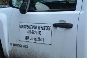 Chesapeake Wildlife Heritage to the rescue!!